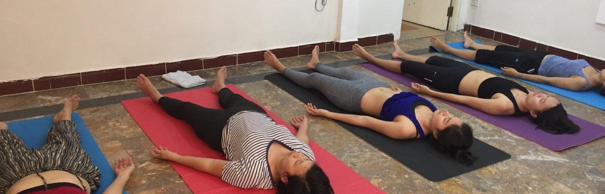 Thông tin khóa học Sivananda Yoga sắp mở – Cơ hội học thử miễn phí cho các bạn mới bắt đầu