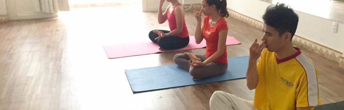 Thông tin Khoá học Sivananda Yoga chính thức khai giảng vào tháng 05/2017
